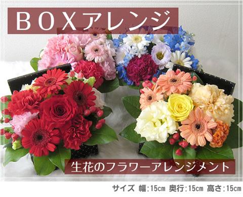 ar-box-title