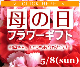 mothersday_top_banner2011_off