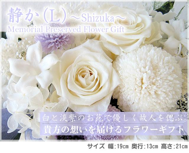 oku-prz-shizuka-l-title