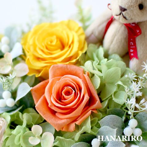 prz-bear-garden-p2