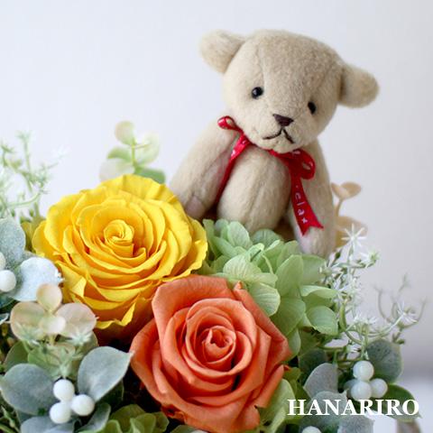 prz-bear-garden-p5